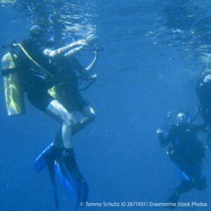 liability-waiver-shark-week_dreamstimefree_2677451